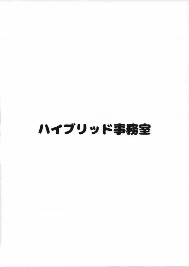 【エロ同人誌 ゼルダの伝説】ハイブリッド通信vol.27【無料 エロ漫画】 (14)